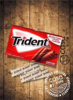 Жвачка Trident Cinnamon (Тридент Корица) 14стиков