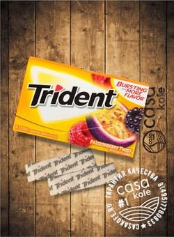 Trident Passionberry Twist (Тридент Маракуйя) 14стиков